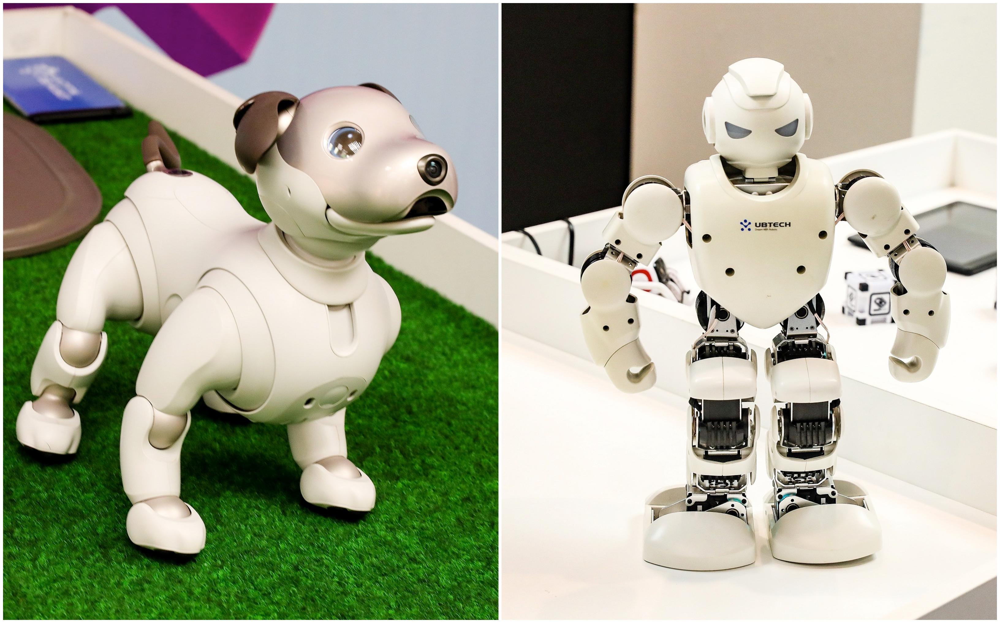 nauji prekybos robotai prekybinė mokomoji medžiaga